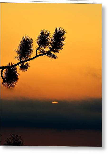 Greeting Card featuring the photograph Sunset At Yosemite by Rima Biswas