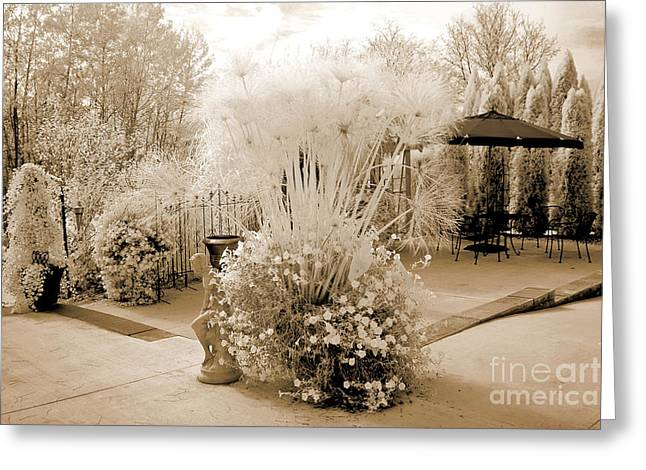 Surreal Ethereal Infrared Sepia Nature Landscape  Greeting Card by Kathy Fornal