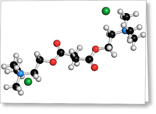 Suxamethonium Chloride Molecule Greeting Card by Molekuul