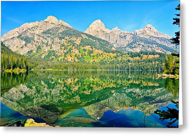 Taggart Lake Greeting Card by Greg Norrell