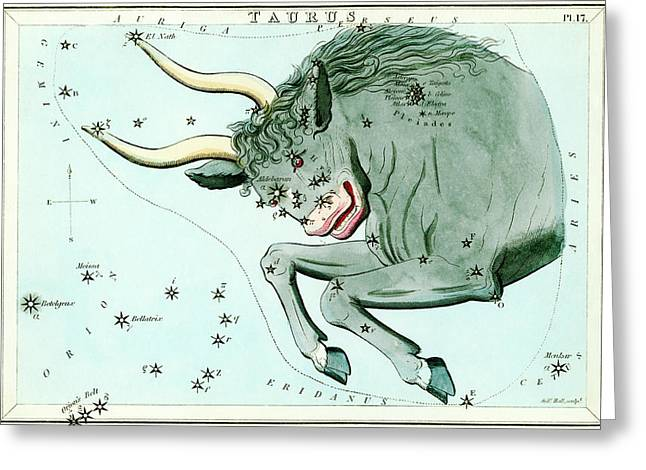 Taurus Constellation Greeting Card