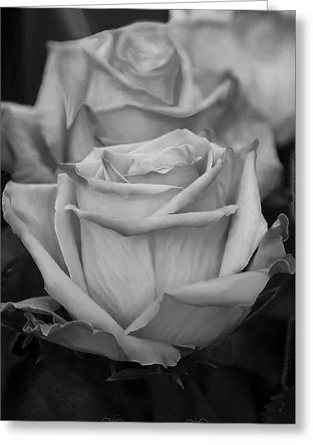 Tea Roses In Black And White Greeting Card