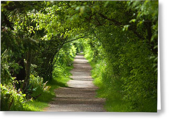 The Green Tunnel Greeting Card