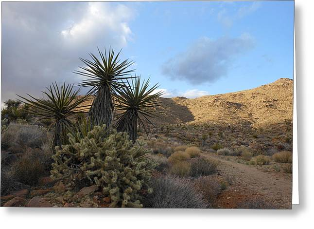 The Living Desert Greeting Card