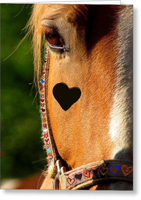 Greeting Card featuring the photograph The Love Of A Horse by France Laliberte