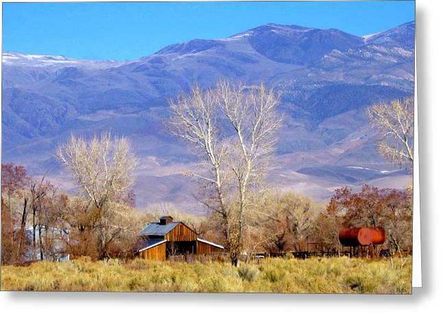 The Ranch Greeting Card by Marilyn Diaz