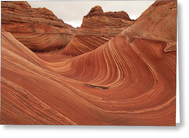 The Wave Greeting Card by Darryl Wilkinson