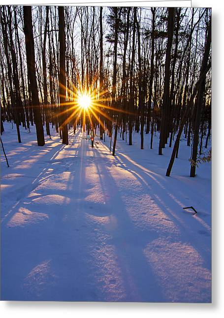 The Winter Kiss Greeting Card