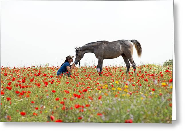 Three At The Poppies' Field... 4 Greeting Card