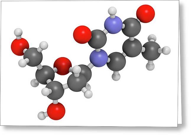 Thymidine Nucleoside Molecule Greeting Card