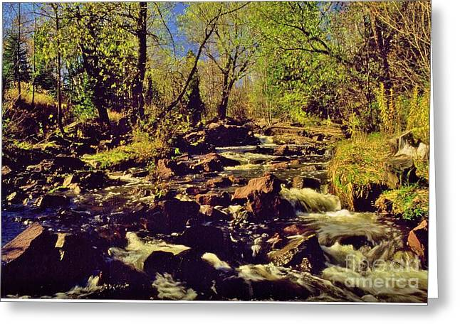 Tischer Creek Autumn Greeting Card by Rory Cubel