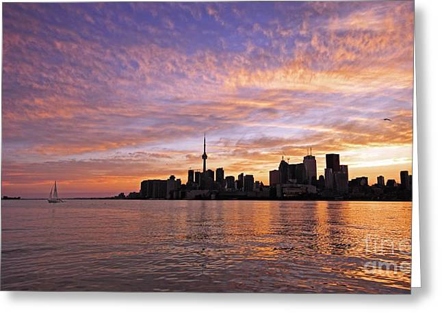 Toronto Harbour Sunset Greeting Card by Charline Xia