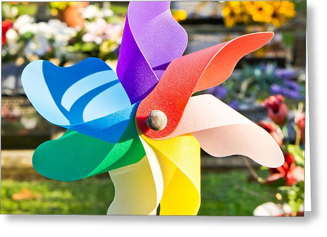 Toy Windmill Greeting Card by Tom Gowanlock