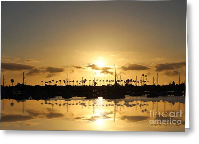 Tranquility Greeting Card by Kevin Ashley