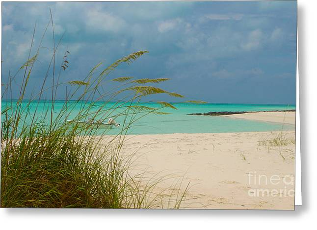 Treasure Cay Greeting Card by Carey Chen