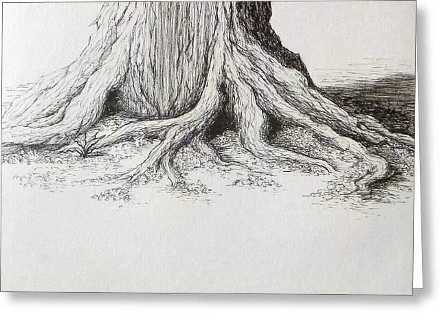 Tree Base Ink Study Greeting Card by Rebekah Reed