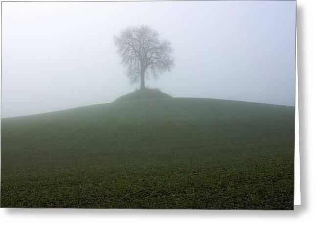 Tree Greeting Card by Bernard Jaubert
