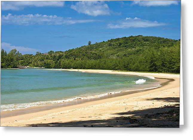 Tropical Paradise Greeting Card by Georgia Fowler