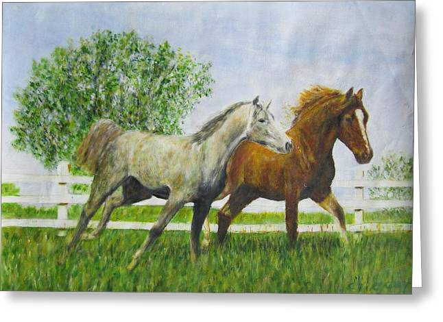 Two Horses Running By White Picket Fence Greeting Card