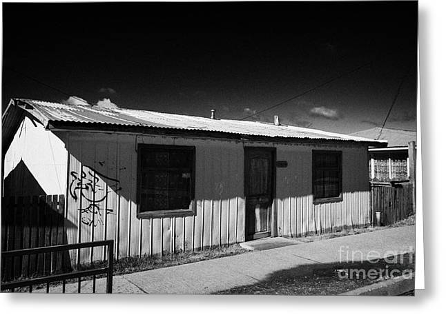 typical chilean construction house with metal tin roof  las naciones Punta Arenas Chile Greeting Card by Joe Fox