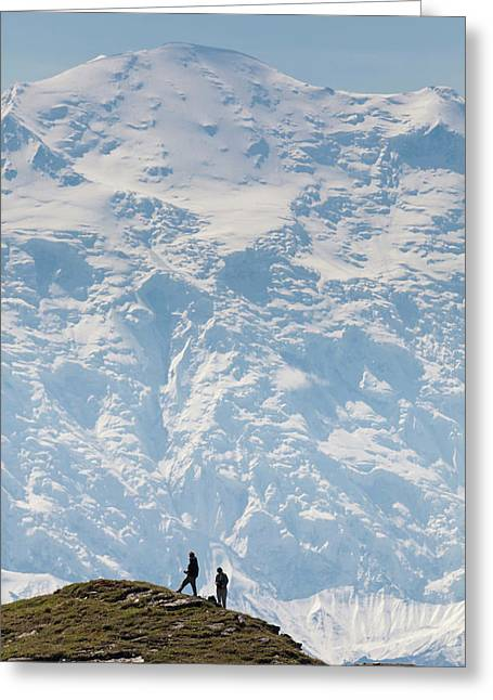 Usa, Alaska, Denali National Park Greeting Card by Hugh Rose