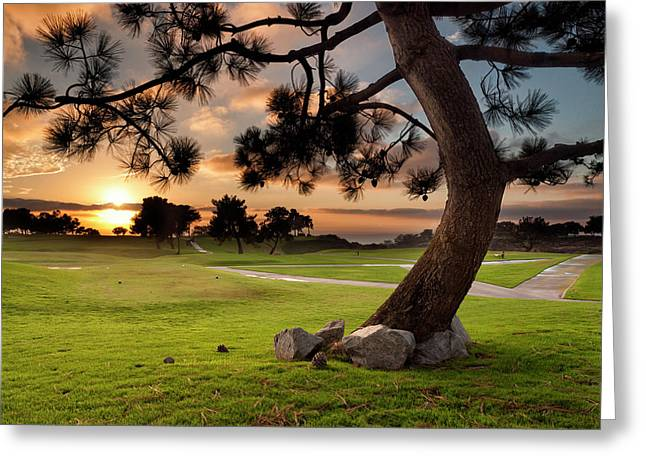 Usa, California, La Jolla, Sunset Greeting Card by Ann Collins
