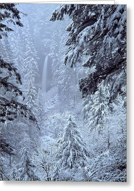 Usa, Oregon, Silver Falls State Park Greeting Card
