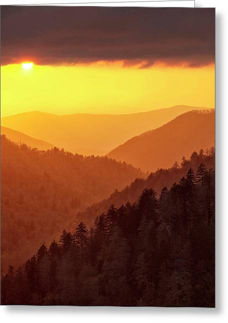 Usa, Tennessee, Great Smoky Mountains Greeting Card by Ann Collins