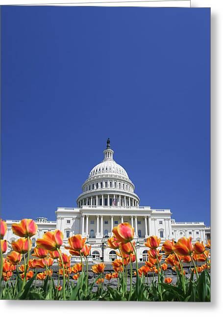 Usa, Washington Dc Greeting Card