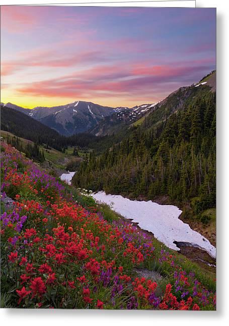 Usa Washington State, Olympic National Greeting Card by Gary Luhm
