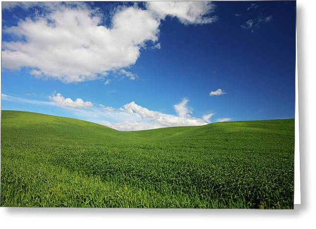 Usa, Washington State, Palouse Country Greeting Card by Terry Eggers