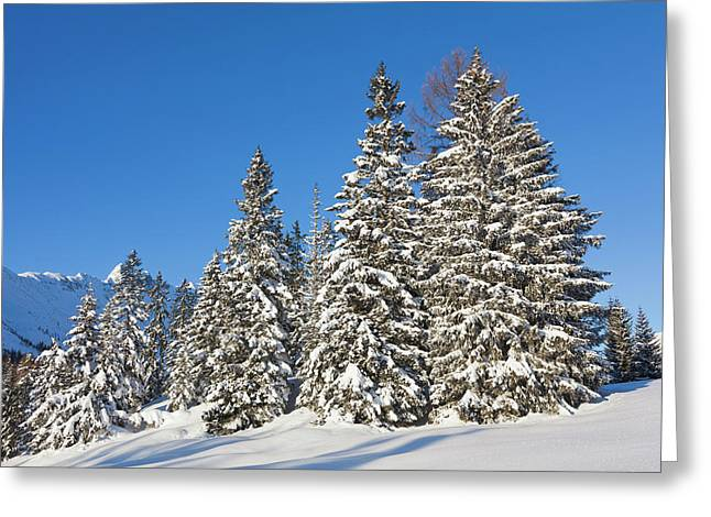 Valley Gaistal With Snow During Deep Greeting Card by Martin Zwick