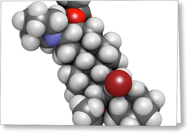Vecuronium Bromide Muscle Relaxant Greeting Card by Molekuul