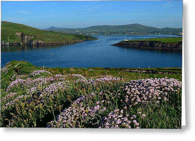 View Over Dingle Bay Greeting Card