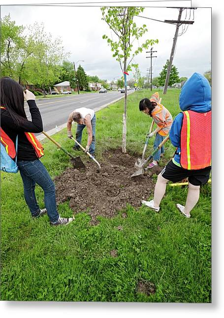 Volunteers Planting Trees Greeting Card by Jim West