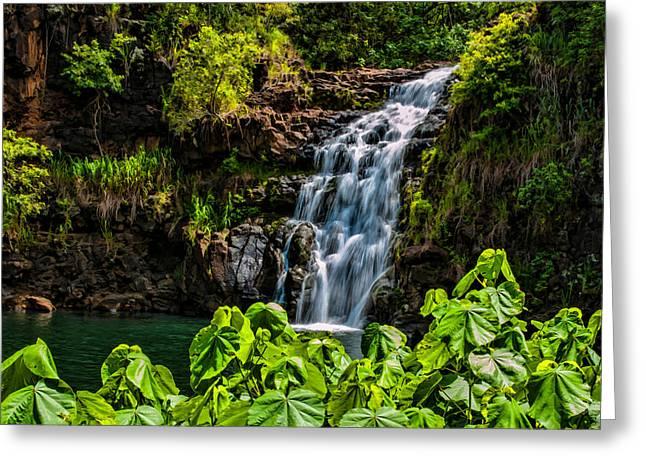 Waimea Falls Greeting Card