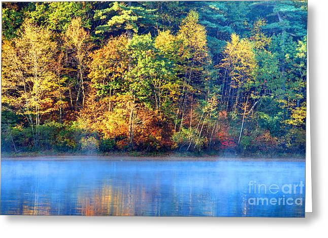 Walden Pond Greeting Card by Denis Tangney Jr