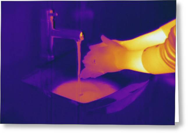 Washing Hands, Thermogram Greeting Card by Science Stock Photography