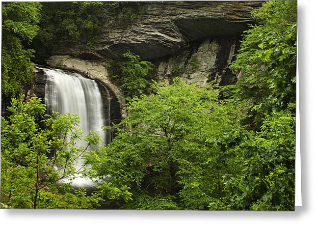 Waterfall In The Woods Greeting Card by Andrew Soundarajan
