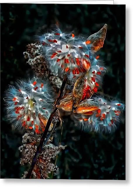 Weed Galaxy  Greeting Card by Steve Harrington