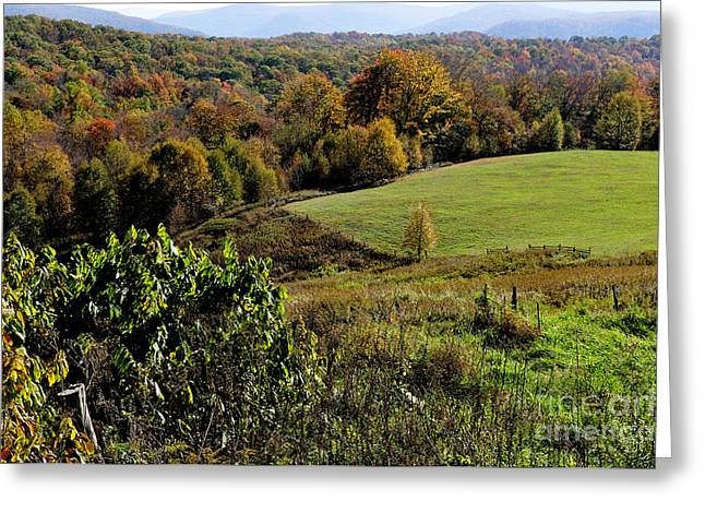 West Virginia Fall Color Greeting Card by Thomas R Fletcher