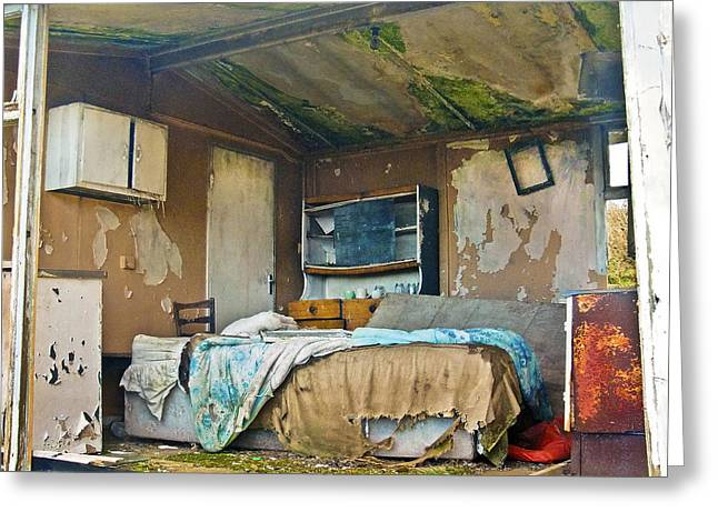 Where Do They Sleep Now Greeting Card by Tony Reddington