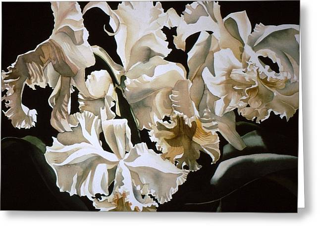 white Cattleya orchids Greeting Card by Alfred Ng