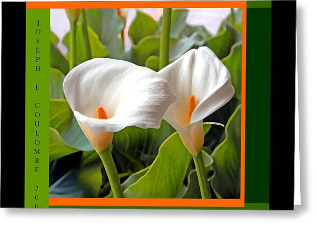 2 White Lily Flowers Greeting Card