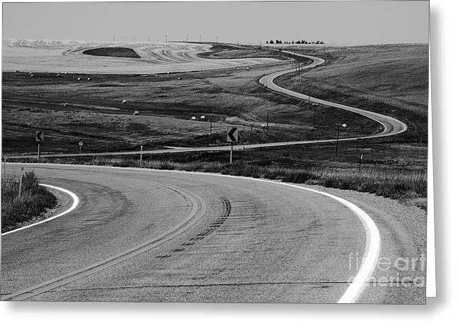 Winding Road Greeting Card by Sue Smith
