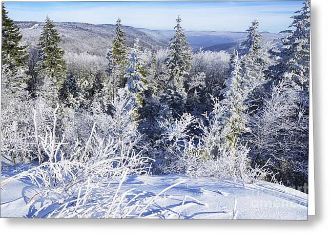 Winter Along The Highland Scenic Highway Greeting Card by Thomas R Fletcher