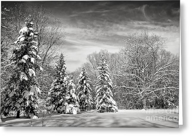 Winter Landscape Greeting Card by Elena Elisseeva