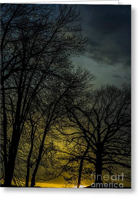 Winter Solstice Sunrise Greeting Card by Thomas R Fletcher
