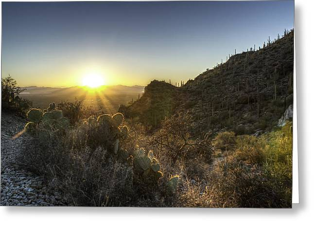 Greeting Card featuring the photograph Winter Sunset by Lynn Geoffroy