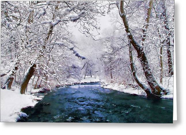 Winter White Greeting Card by Jessica Jenney